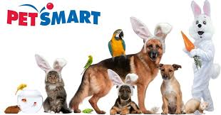 check petsmart store hours hours opening closing time