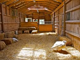Living In A Barn Farm Barn Inside Another Idea To Do It Without The Mezzanine But