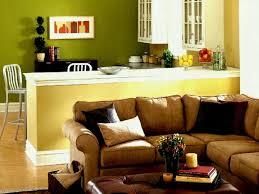 Living Room Decorating Ideas Cheap Apartment Living Room Decorating Ideas On A Budget Magnificent