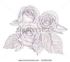 the retro line roses vector free vector in encapsulated