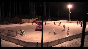Backyard Hockey Download Backyard Hockey