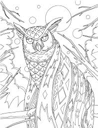 owl coloring pages bluestarcoloring com