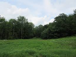 plainfield nh real estate plainfield new hampshire land acres