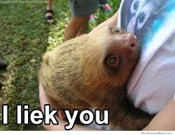 Memes Sloth - i miss you sloth memes miss best of the funny meme