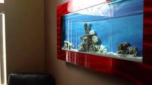 Wall Aquarium by Fluval Edge Aquarium Wall Mount Aquarium Design Ideas