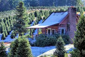 The Great Barn At Stone Mountain Top 50 Asheville Cabin Rentals