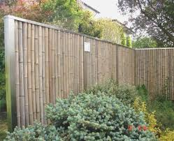 garten gestalten mit bambus u2013 treefunder co