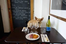 Aarons Dining Room Tables by Hip Paris Blog Under The Table Dining With A Dog In Paris