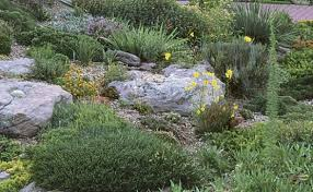Rock Gardens On Slopes Rock Garden Primer Finegardening