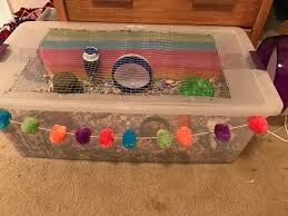 How Much Is A Hamster Cage How To Build A Double Bin Cage Tips How To And Diy Hamster