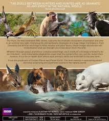 Seeking Season 3 Dvd Release Date The Hunt 2015 2016 David Attenborough Tv Season Series