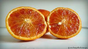 color my winter blood orange the sicilian blood