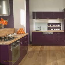 l internaute cuisine 30 génial meuble de cuisine violet photos meilleur design de cuisine