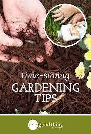 gardening tips 763 best home garden ideas images on pinterest flower