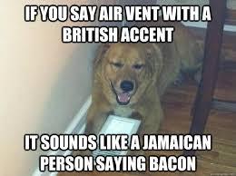 High Dog Meme - really high dog memes quickmeme