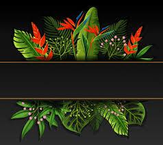 design with bird of paradise flowers vector premium