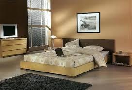 couleur pour une chambre d adulte tendance exemple couleur peinture chambre vue int rieur and modele