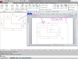copying and pasting from the autocad to the word keeping the scale