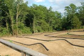 backyard track images reverse search