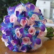 Blue Orchid Flower - best 25 blue orchids ideas on pinterest blue orchid wedding
