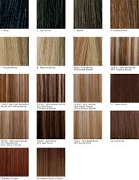 golden color shades hairstyle goldenr color chartrstyle ideas in clairol shades by