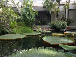 brooklyn botanic garden prospect park new york