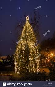 outdoor lighted christmas tree stock photos u0026 outdoor lighted