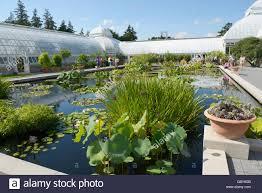Botanical Garden In Bronx by Pond New York Botanical Garden Bronx Ny Stock Photo Royalty