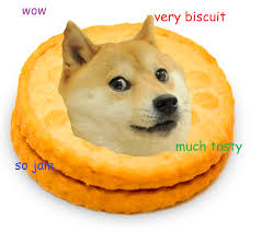 Such Doge Meme - such doge hashtag images on tumblr gramunion tumblr explorer