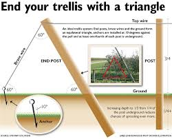How To Build A Trellis Tips To Build A Trusty Trellis Good Fruit Grower