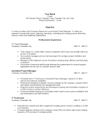 resume text format cv resume text format it project manager resume sle jobsxs