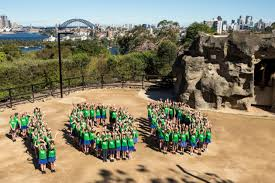 Taronga Zoo Christmas Party - pr firm creation appointed for taronga zoo u0027s centenary birthday b u0026t