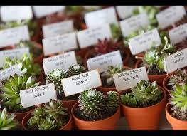 plant wedding favors 30 wedding favors your guests will actually like huffpost