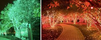 when does the lights at the toledo zoo start 24 holiday events in the toledo area toledo holiday event guide