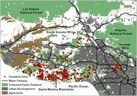 Map Of Los Angeles Area La Area Mountain Lions Are Surprisingly Urban Curbed La
