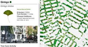 Central Park New York Google Maps by Map Nyc Has More Than 666 000 Street Trees Up 12 Percent Since