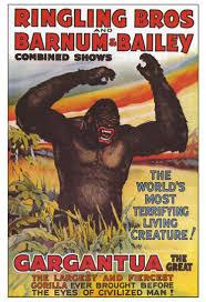 Barnes And Bailey Circus 1938 Ringling Bros Barnum U0026 Bailey Gargantua Gorillas Circus