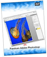jual dvd tutorial desain grafis desain dvd tutorial photoshop corel flash pinnacle terlengkap
