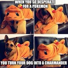 Charmander Meme - charmander imgflip