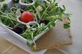 how to eat a raw foods diet gardening channel
