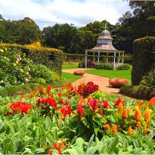 Wollongong Botanic Gardens Wollongong Botanical Gardens So Beautiful Places I Want To Go
