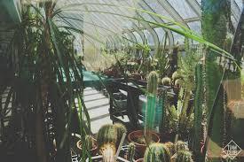 family garden brooklyn brooklyn botanic garden