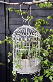 32 best bird cages images on pinterest birdcage wedding wedding