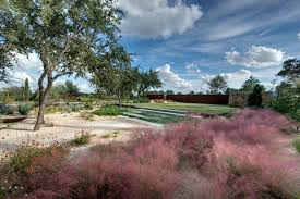 great design plant pink muhly grass