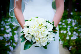 gardenia bouquet white gardenia bouquet bouquet wedding flower