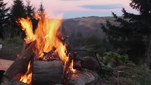 log fire at open fire fireplace in high mountains with forest and