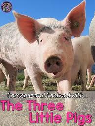 true story pigs u0026 pigs