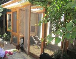Chickens In The Backyard by Raise Backyard Chickens Without Ruffling Neighbors U0027 Feathers