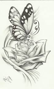flower butterfly drawing drawn butterfly flower sketch pencil and