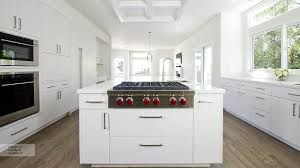 Kitchen Furniture White Fascinating Modern Kitchen With White Cabinets Pictures Of Norma